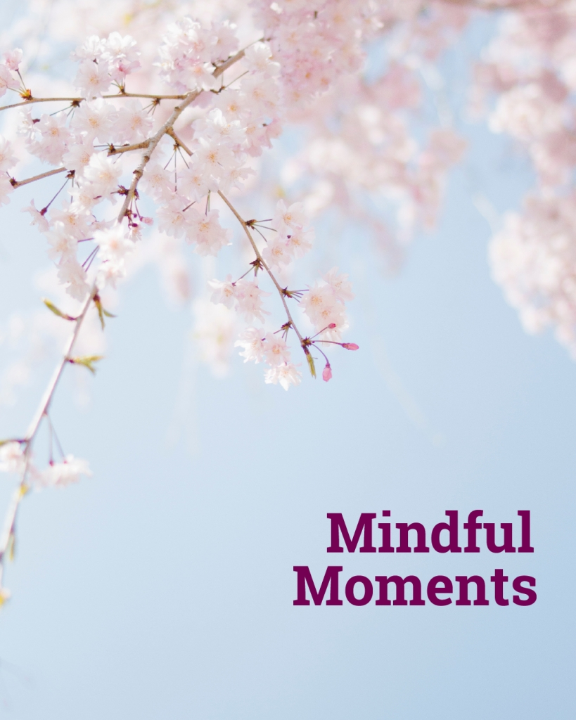 Cherry blossoms with text Mindful Moments